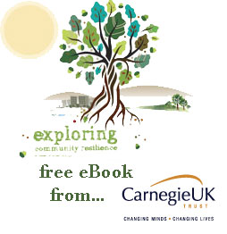 Exploring Resilience book download